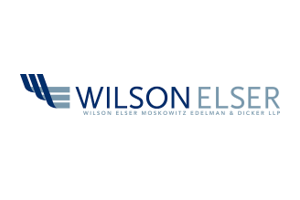 Wilson Elser Moskowitz Edelman & Dicker LLP - Sponsors of the 2019 Go Global Awards and 2019 Think Global Forum