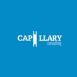 Capillary Consulting Inc. is a winner of the 2019 Go Global Awards from the International Trade Council