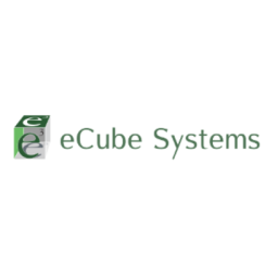 e-Cube Systems, LLC - Winner of the 2019 Go Global Awards by the International Trade Council